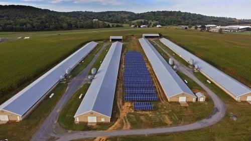 Rivermont Farm overhead