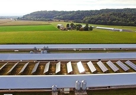 aerial of ground mount solar system in poultry farm