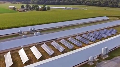 solar panels poultry farm timberville va