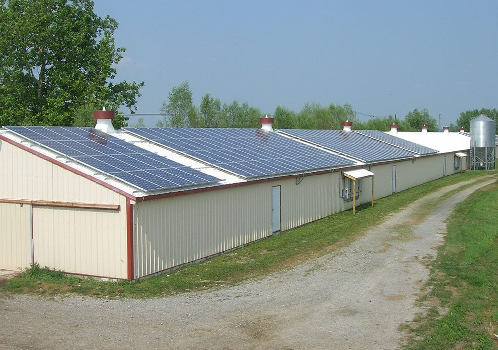 solar panels on chicken house roof