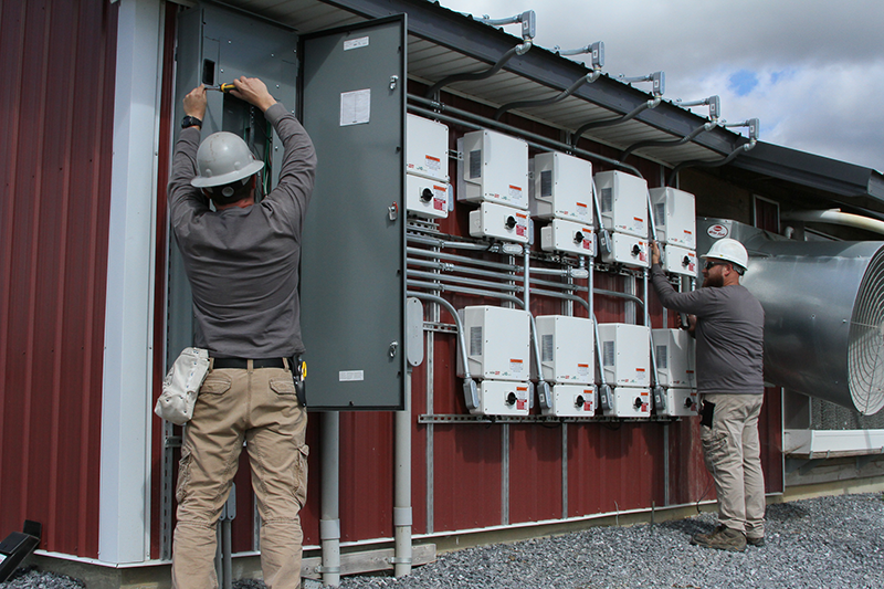 Paradise-Energy-Solar-Installers-In-Action