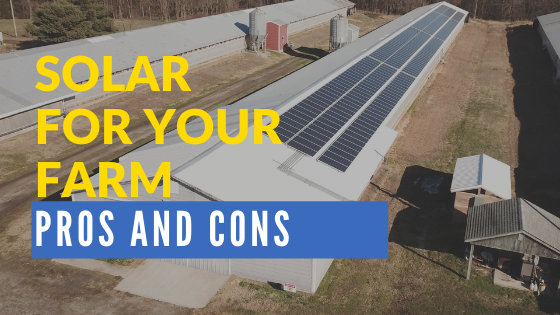 Pros and Cons of Solar Energy for Farmers